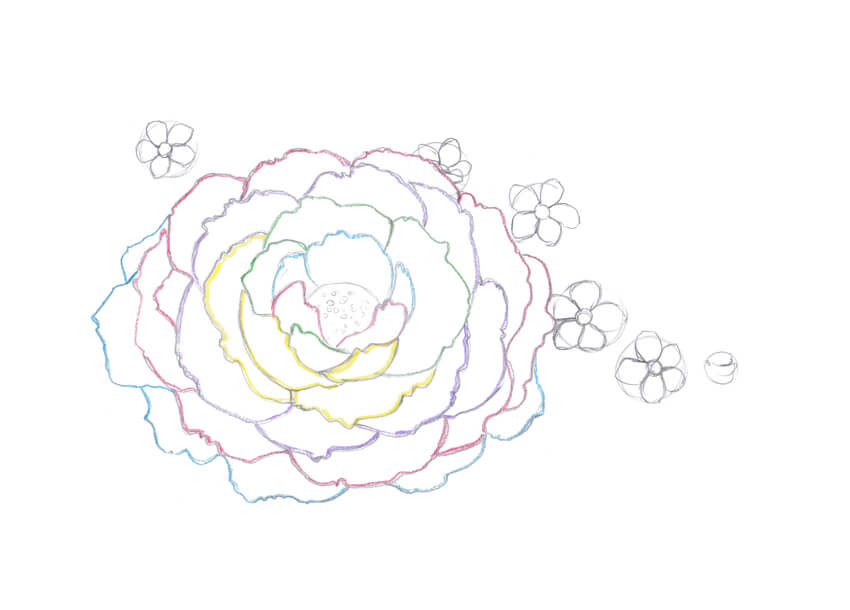Drawing Lines With Core Graphics : How to draw spring flowers with colored pencils