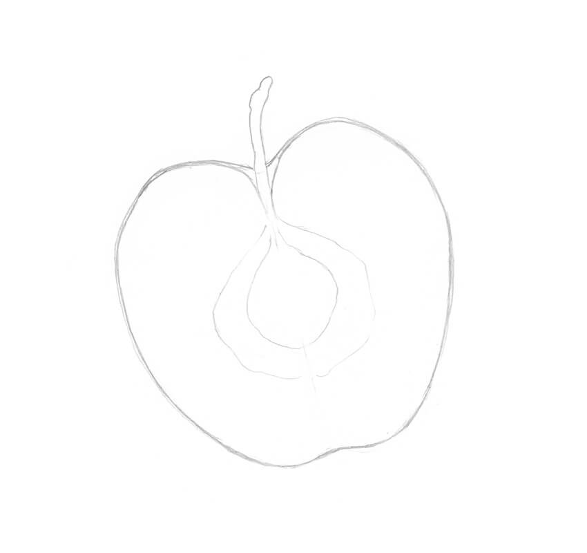 Drawing the central part of the apple