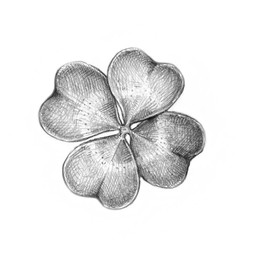 Completing the drawing of the four-leaf clover