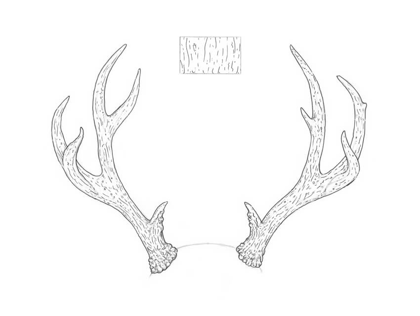 Working on the texture of the antlers