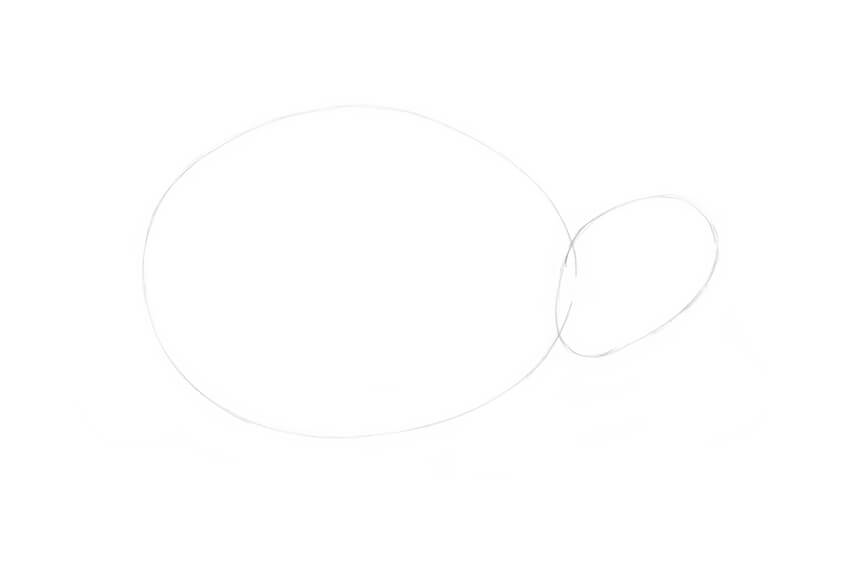 Drawing a rough shape of the head
