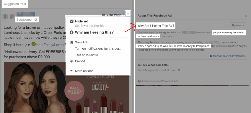 Facebook Ad Targeting
