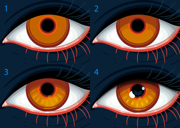 detailing of the eyes