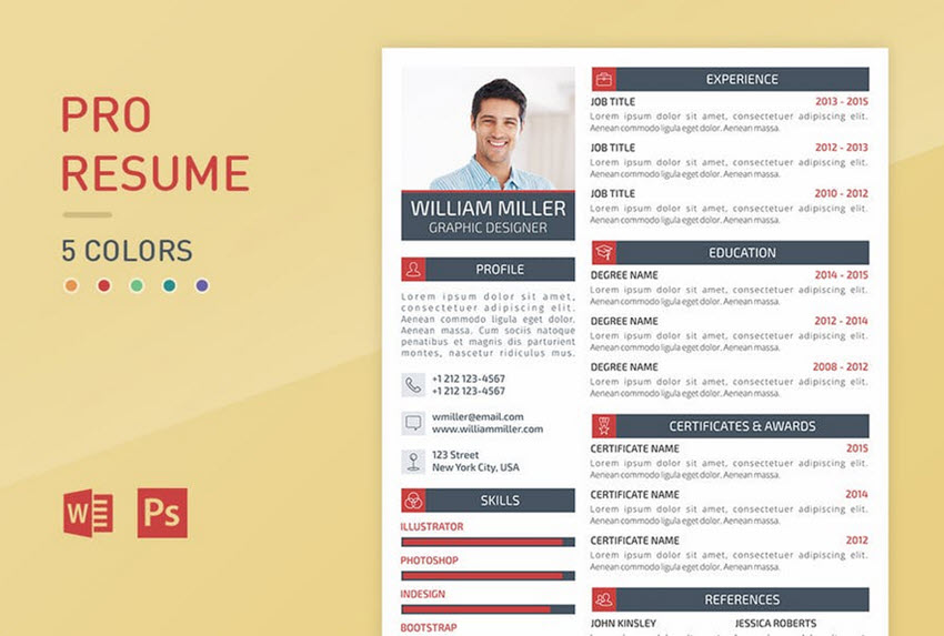 Pro Resume   Colorful Professional Resume Template