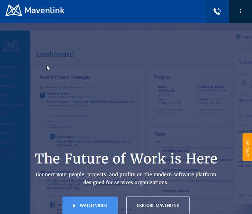 Mavenlink project management