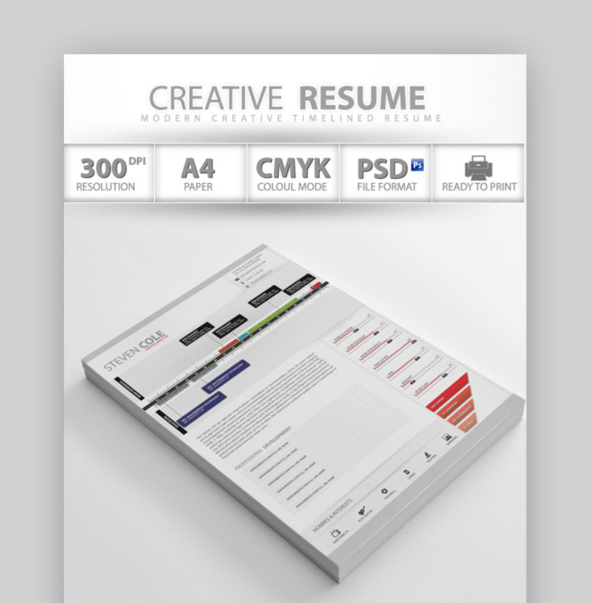 Professional Creative Resume - Artist Resume Sample