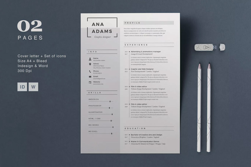 Professional Elements Resume - Anna