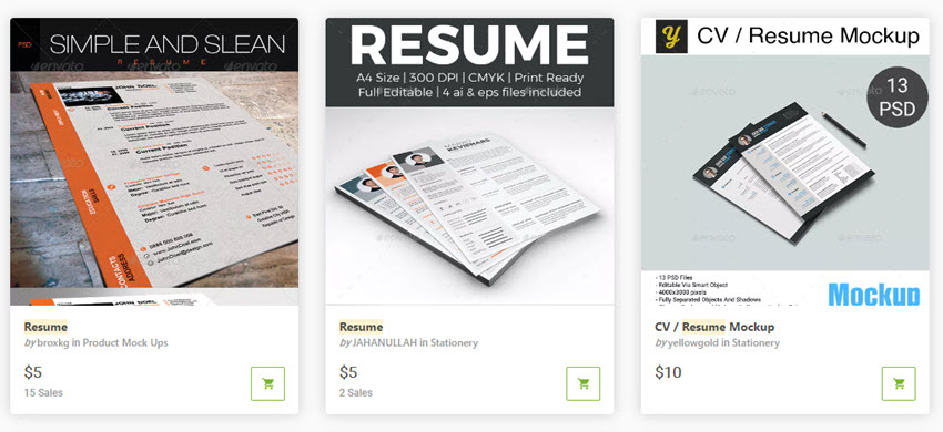 30 Best Professional Business Resume Cv Templates For 2019