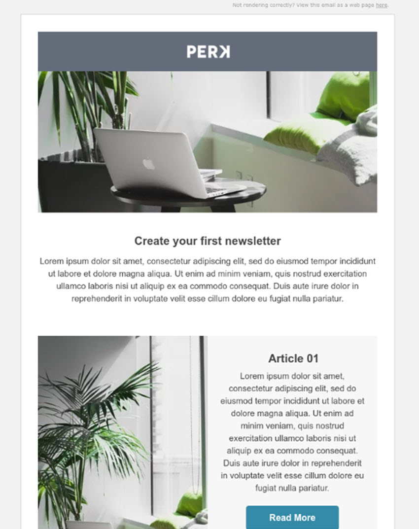 Perk Free Email Newsletters Template