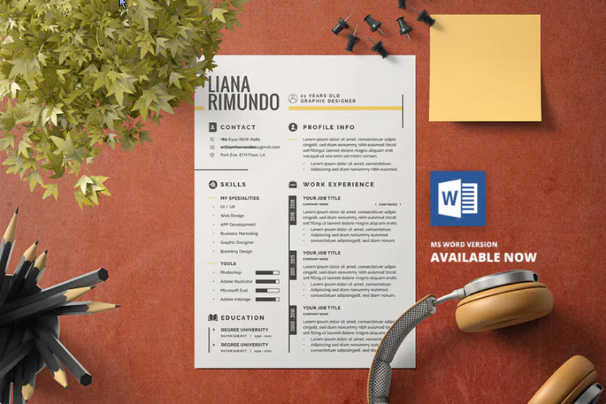 What is a resume intro
